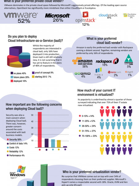 Cloud, IaaS & Virtualization Adoption 2013 Infographic