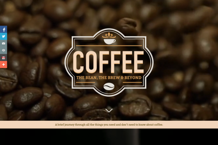 Coffee: The Bean, The Brew and Beyond Infographic