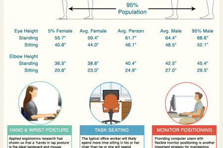 Designing the Perfect Office  Infographic