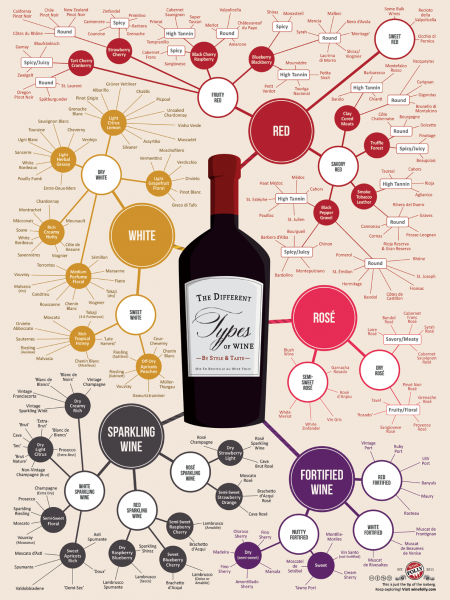 Different types of wine  Infographic