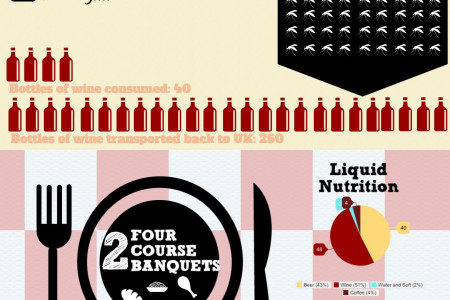 Disastro Grippaggio 2014 in numbers Infographic