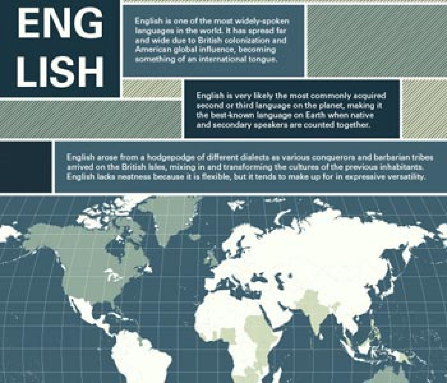English Language Infographic Infographic