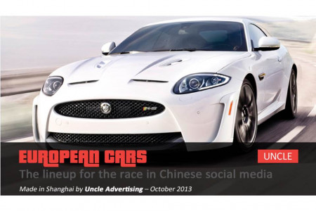 European Cars: The Lineup for the Race in Chinese Social Media Infographic