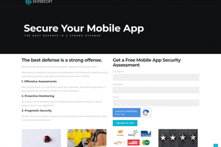Free-mobile-app-security-assessment Infographic