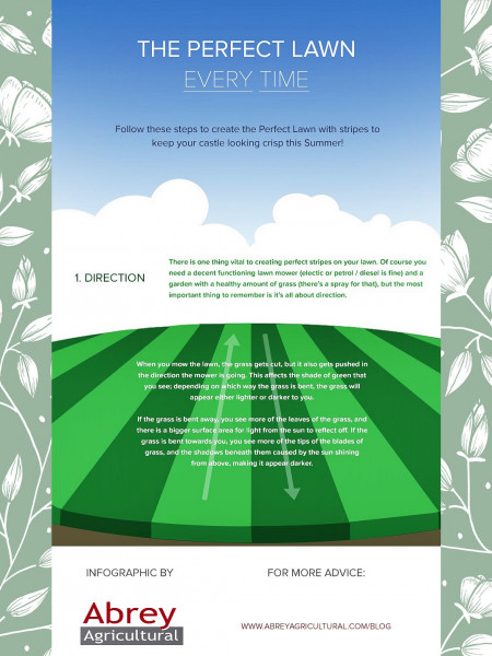 Get The Perfect Lawn Infographic