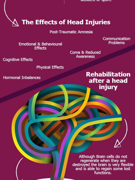 Head Injuries The Facts Infographic