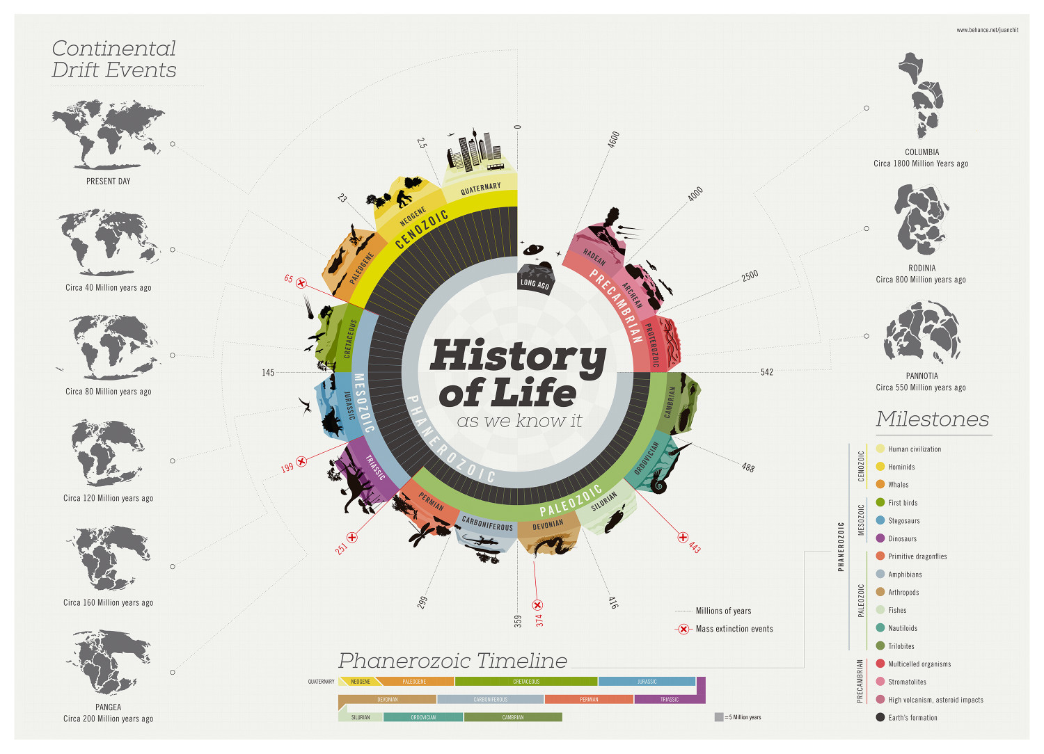 History of Life Infographic