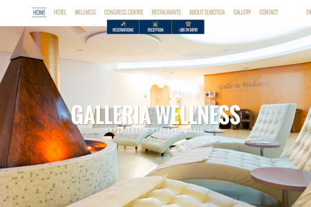 Hotel Galleria Website Infographic