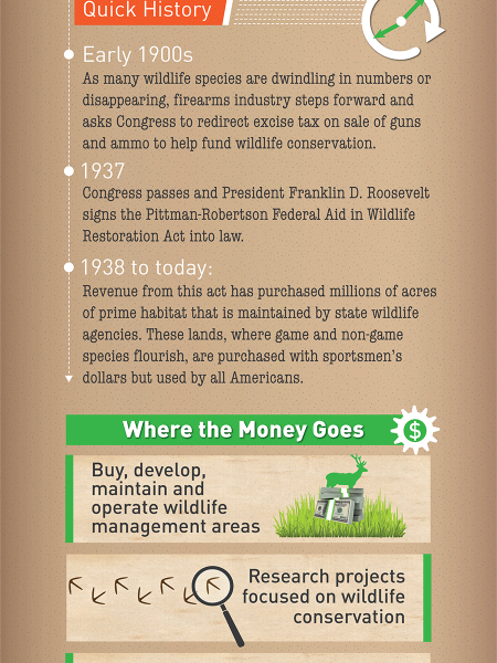 How Wildlife is Thriving Because of Guns & Hunting Infographic