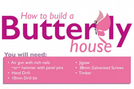 How to Build a Butterfly House Infographic