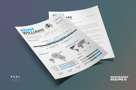 Infographic Resume n2 Infographic