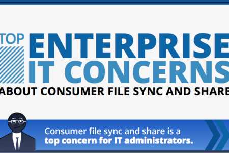 Infographic: Top Enterprise IT Concerns About Consumer File Sync and Share Infographic