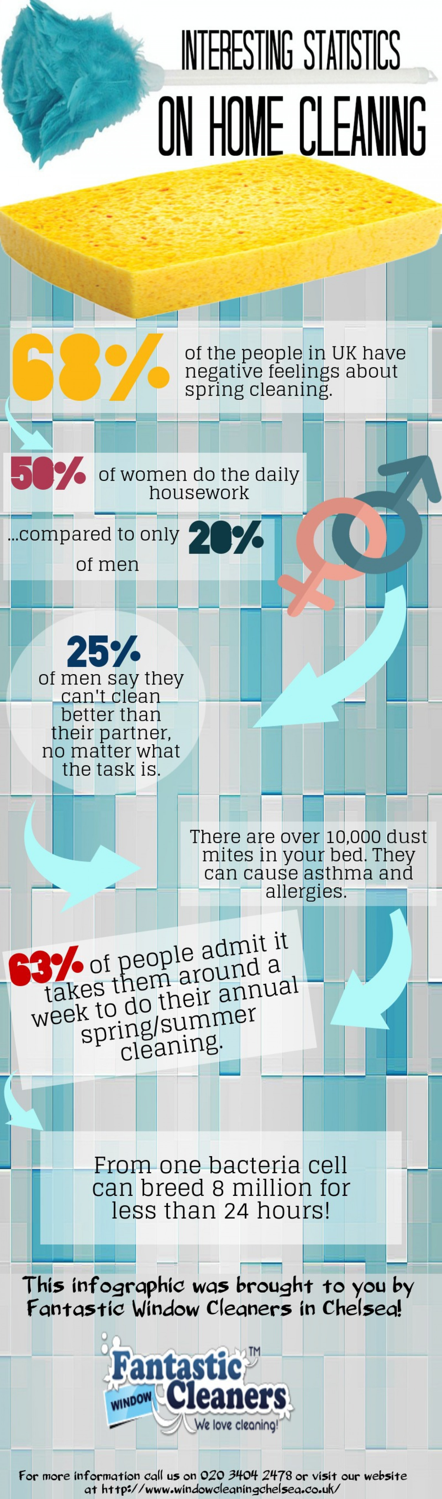 Interesting Statistics On Home Cleaning Infographic