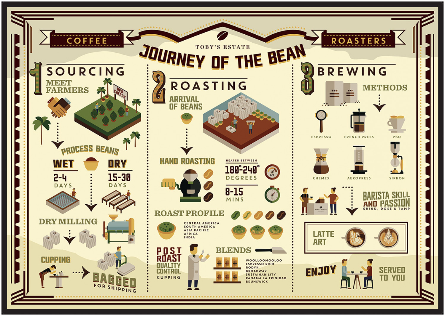 Journey of The Bean Infographic