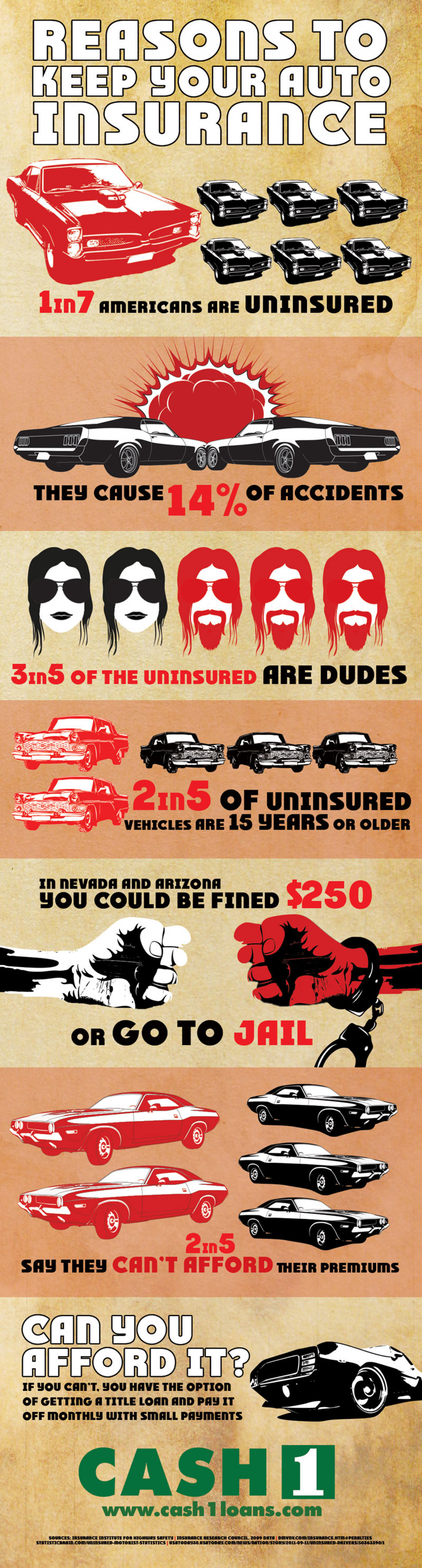 Reasons to Keep Your Auto Insurance Infographic