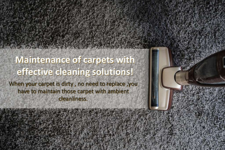 Maintenance of carpet with effective cleaning solutions Infographic