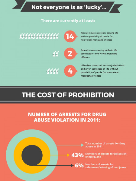 Marijuana Laws: The Past, Present & Future  Infographic