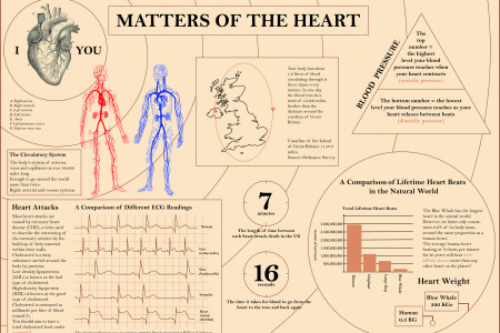 Matters of the Heart - an infographic look at the human heart Infographic