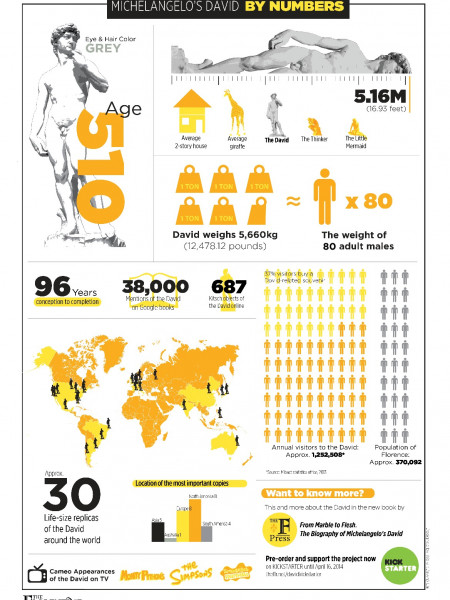 Michelangelo's David By Numbers Infographic