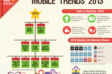 Mobile Trends 2013 Infographic