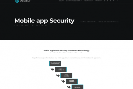 Mobile app security Infographic