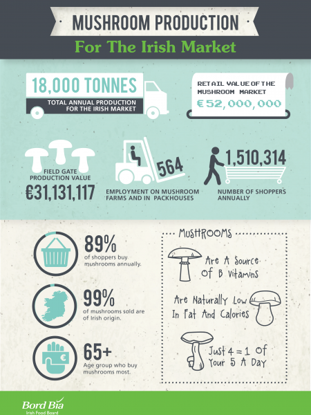 Mushroom Production For The Irish Market Infographic