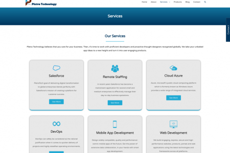 Pletra Technologies: Services Infographic