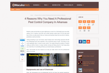 Reasons Why You Need A Professional Pest Control Company In Arkansas  Infographic