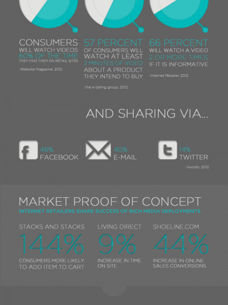 Rich Media and Your Small Business Infographic