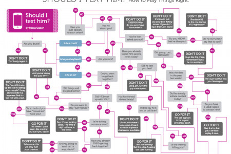 Should I Text Him? Flowchart Infographic