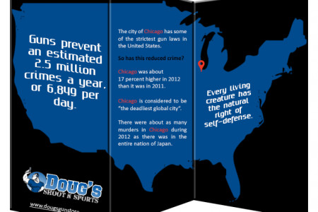 Strict Gun Law in Chicago Infographic