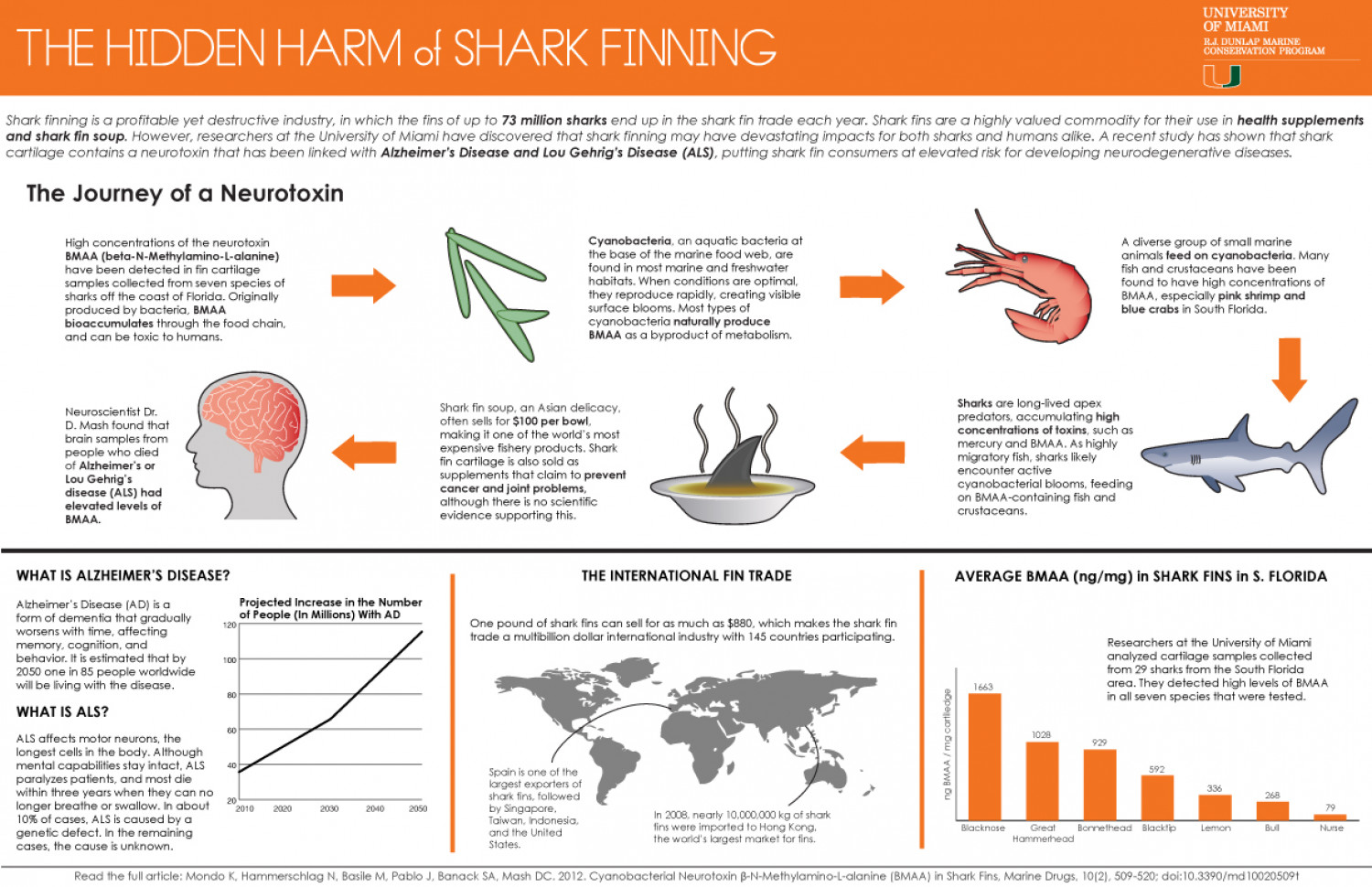 The Hidden Harm of Shark Finning Infographic