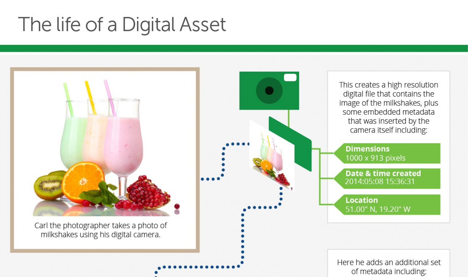 The Life of a Digital Asset Infographic