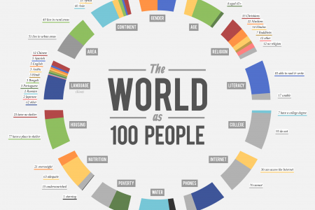 The World as 100 People Infographic