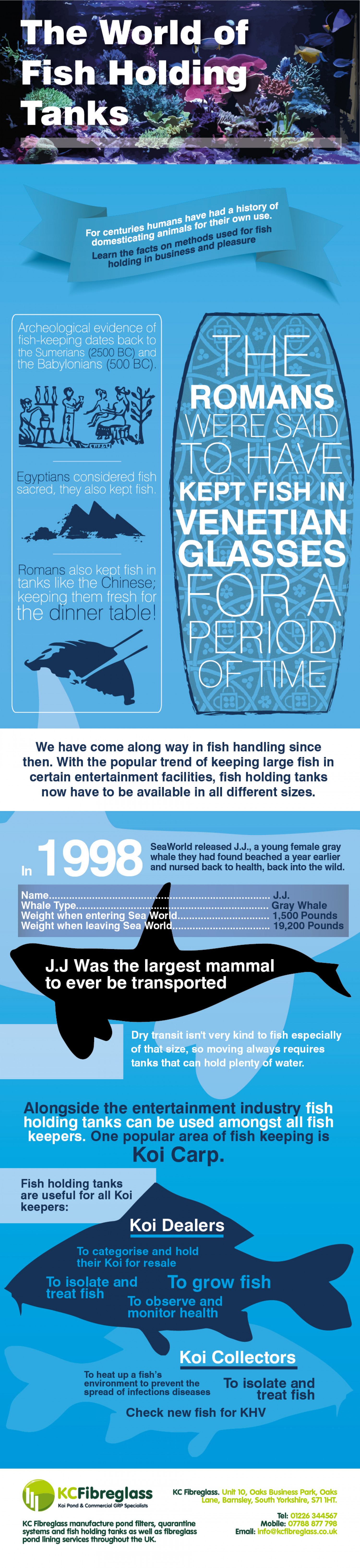 The World of Fish Holding Tanks Infographic