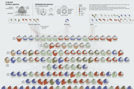 The catalogue of the extinct species Infographic