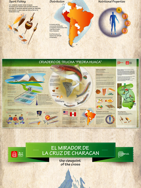 Tours in Peru Infographic