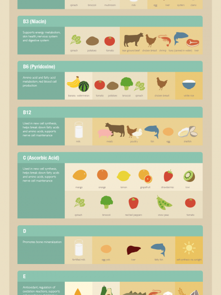 Vitamins Cheat Sheet Infographic