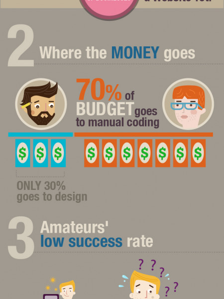Web Design Industry Analysis: Professionals vs. Amateurs Infographic