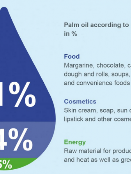 Weighing Business Transactions Case study: Palm oil Infographic