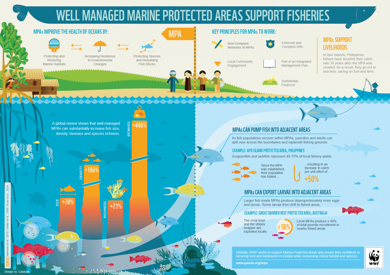 Well Managed Marine Protected Areas Support Fisheries Infographic