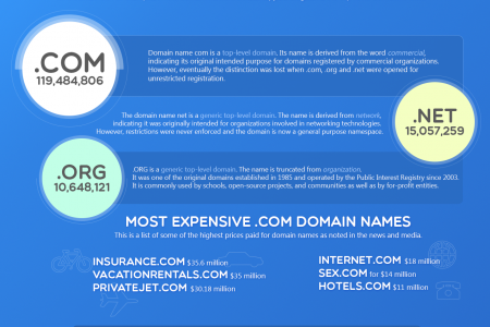 What is a Domain Name? - Startupyourblog.com Infographic