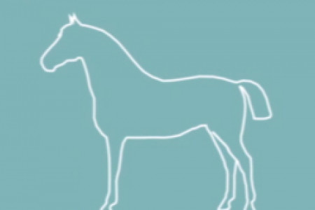 What's Wrong with Horsemeat Infographic