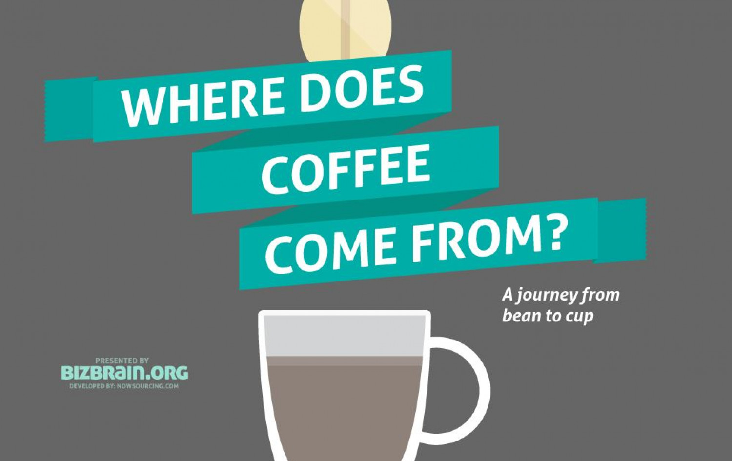 Where does coffee come from? Infographic