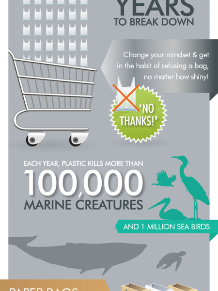 Why use Reusable Bags? Infographic