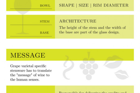Wine Glass Guide Infographic