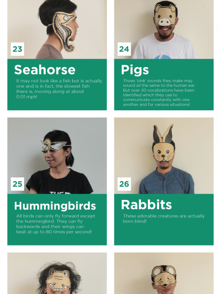 World Animal Day - 30 Fun Animal Facts pt 3 Infographic