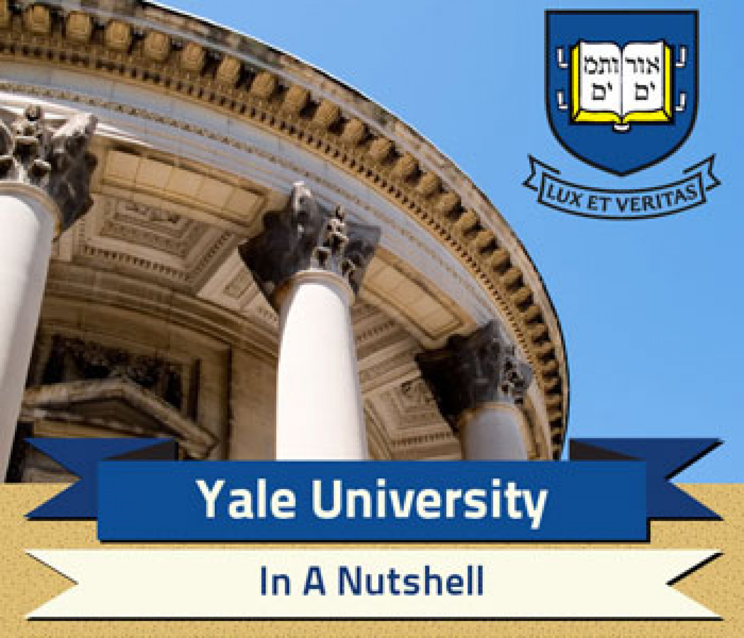 Yale University Infographic Infographic