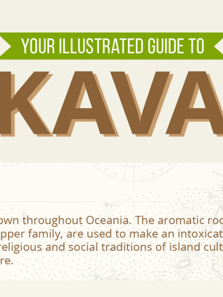 Your Illustrated Guide to Kava | Bula Kava House Infographic