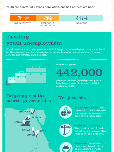 Youth Unemployment in Egypt Infographic